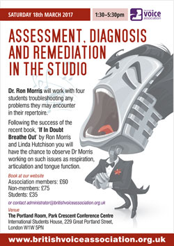 Assessment, diagnosis and remediation in the studio - poster